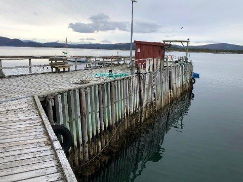 Kaiveggen: Det er mot denne delen av kaia på Tranøy at losbåtene av og til legger til.  Tilstanden er bekymringsfull.