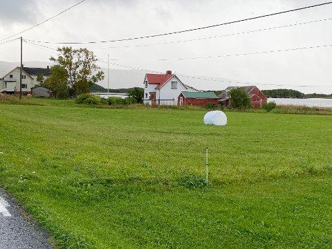 I strid: Fylkesmannen mener politikerne i Steigen ikke har lagt tilstrekkelig vekt på hensynet til jordvernet, og at fradelingen av boligtomta er i strid med statlige og regionale rammer og mål.