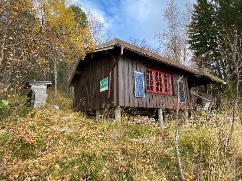 Godt kjøp? Denne litt avsidesliggende hytta i Tømmeråsen i Hamarøy er til salgs for knapt 700.000 kroner. Med på handelen følger en eiendom på 50 mål, en seilbåt og seks hyttetomter.
