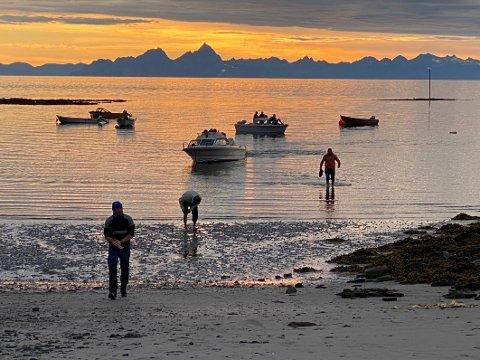 Økende turisme: Steigen opplevde en markant økning i turisttilstrømningen sist sommer. Turistene kom  både landeveien og sjøveien.