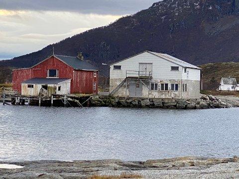 Restaureres; Dette er to av de tre byggene som Kurt-Arne Mosand har kjøpt på Buvåg. De kan snart få et nytt liv etter å ha stått og forfalt i flere tiår.
