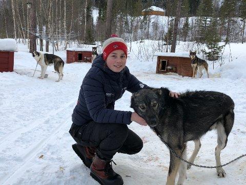 Tøff utfordring: Mia Alm (14) har forberedt seg etter beste evne på det som venter henne, men kraftanstrengelsen vil uansett bli en helt ny opplevelse for 14-åringen fra Røkland i Saltdal kommune.
