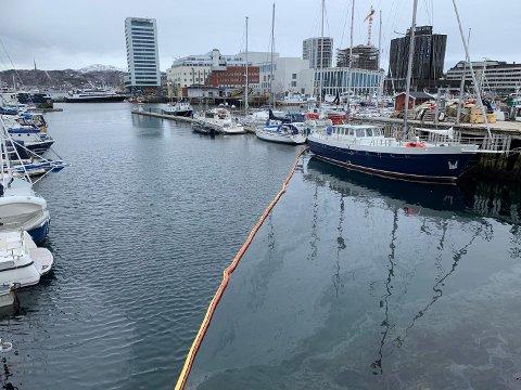 Lekkasje: Erlend A. Willumsen utviklings- og kommunikasjonssjef hos Bodø havn  bekrefter oljelekkasje i Bodø havn.