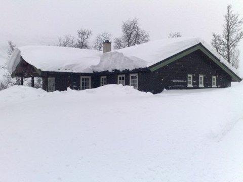 Stor utfordring: Codan Forsikring oppfordrer til å søke hjelp av lokale til befaring og snømåking av hyttetaket for å unngå skader.