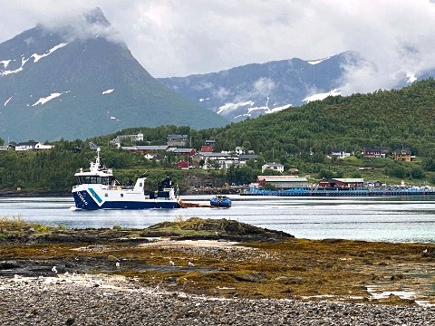 Ønsker: Bogen og omegn grendelag ønsker barnehage på stedet etter at Cermaq Norway etablerte lakseslakteri der.