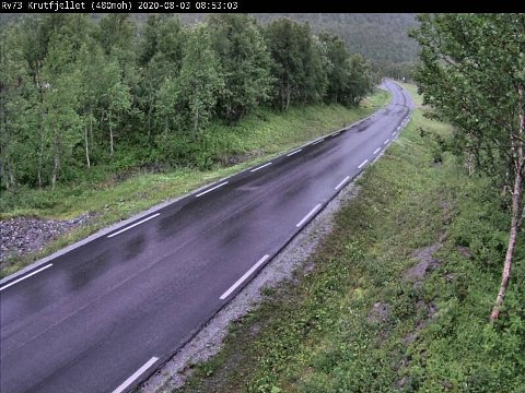 Statens vegvesen sitt webkamera på Krutfjellet på Helgeland viser regn mandag i 9-tiden.