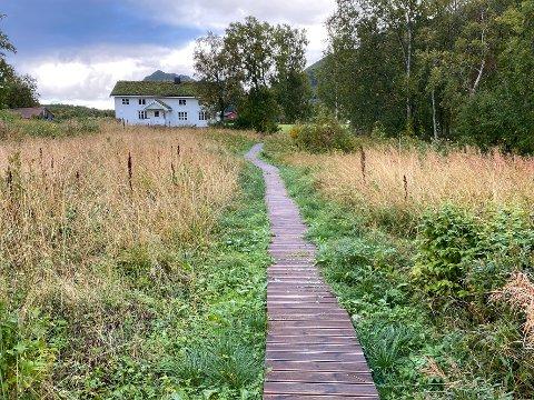 Klopper: Det blir ikke bygd bilvei fram til noen av hyttene til Erik Vaag og Hege Braate Vaag. Derimot er det anlagt klopper der det er behov for det for å unngå å bli våt på beina.