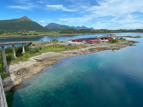 Øya: Dette er Ålstadøya der Ole Jakob Aalstad har jobbet med planer om betongstasjon. Arealet der stasjonen var planlagt plassert, eies av Nordland fylkeskommune.