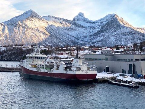 Kaia: Kommunen eier kaia i tilknytning til lakseslakteriet i Bogen, men den benyttes hovedsakelig av Cermaq Norway. Selskapet er villig til å betale 3,5 millioner for kaia.