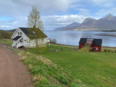 Bratt: Hele Leirvika består ifølge ekteparet Vibeke og Ken Solbakken-Strømsnes av leire. I tillegg er det svært bratt i området, noe paret mener øker faren for et leirskred.