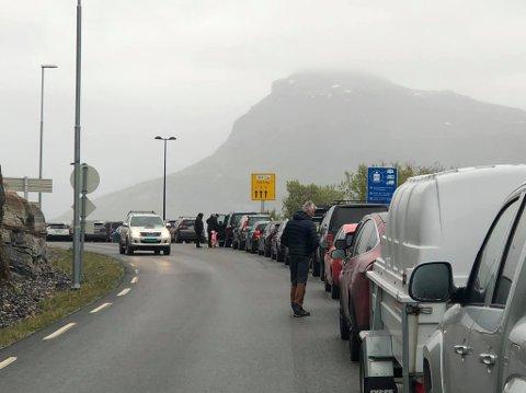 STO IGJEN: Nærmere 80 biler sto igjen på kaia da ferga gikk fra Kjerringøy.