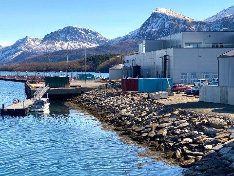 Ville ikke kjøpe: Det blir ikke noe av salget av kaia på industriområdet Storskjæret øst. Det er Cermaq Norway veldig bekvem med. Bedriften hadde ikke noe ønske om å kjøpe kaia, ble det opplyst i kommunestyret.