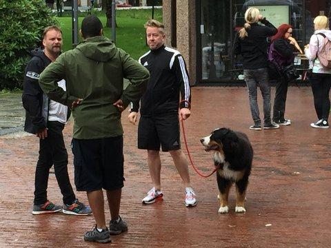 Her er hunden til Robbie Williams på luftetur utenfor hotellet på Bryggen.