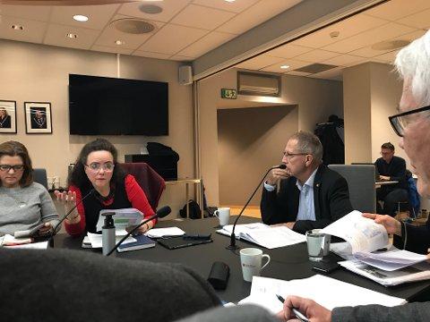 Vegdirektør Terje Moe Gustavsen og Anna Elisa Tryti diskuterer bompengesaken som skal til Stortinget.