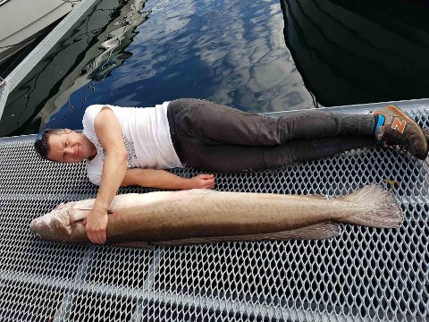 Tomasz er 178 cm høy. Så da kan du selv gjette hvor lang fisken er...