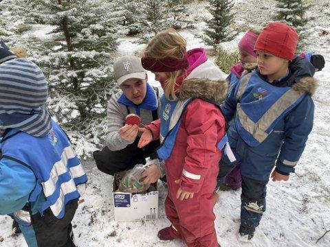 Frank Røttingen (29) deler ut julepynten til de ivrige førskolebarna som skal pynte treet.