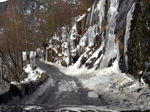 Slik så det ut på fylkesvei 569 da Janne Maj Nagelsen og samboeren kom kjørende.