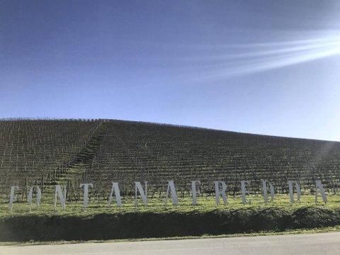 Fontanafredda er en av de gamle og flotte vingårdene i Italia. Den var opprinnelig både kongens jaktslott og elskovsrede.