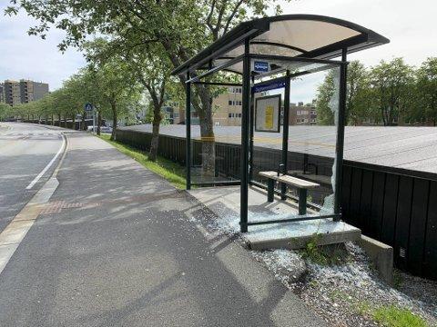 Knuste ruter i byens busskur er et stort problem for Statens vegvesen. Dette skuret ved Dag Hammarskjolds vei fikk ruten knust for noen uker siden.