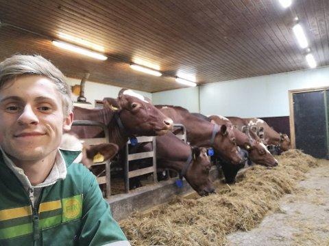 Torstein Skjerping var ferdig utdannet agronom ved Voss jordbruksskule i vår. Og kaster ikke bort tiden. Nå jobber han som melkebonde på heltid.