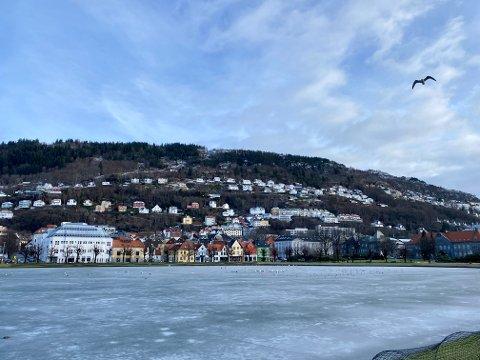 Søndag er det kjølig og fint oppholdsvær i Bergen. Det kan vi vente oss mye av i uken som kommer.