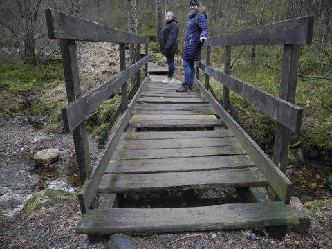 Broen inn til vestsiden av Kanadaskogen: Den er dårlig vedlikeholdt, mangler treverk og kan potensielt være veldig farlig.