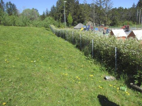 Flere barn måtte til legevakt etter å ha lekt med rottegift som var plassert langs gjerdet på dette uteområdet i Toftøy barnehage 5. mai.