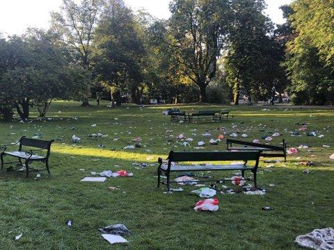 Bosset fløt i Nygårdsparken tirsdag morgen.