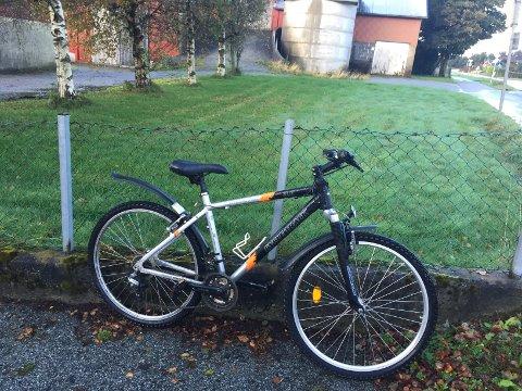 Denne sykkelen har stått oppstilt langs Vistnesveien i en uke, men eieren har ikke dukket opp.