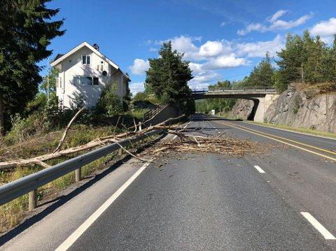 TREFALL: Et tre har falt ut i veibanen på rv. 35 i Åmot.