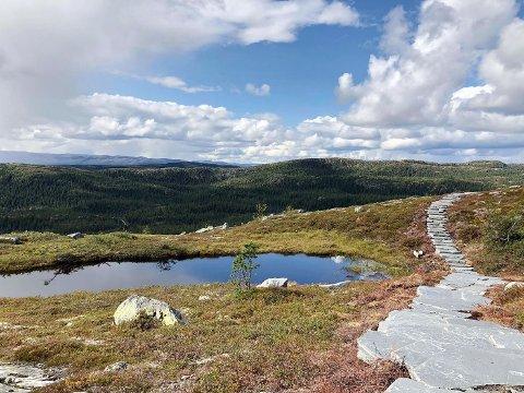 ENGASJEMENT: Kampen om Norges beste turrute har ført til at noen har blitt litt for kreative for å stemme fram sin favoritt.