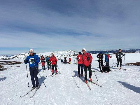 LANGRENN: Administrasjonen i Sigdal kommune ønsker at Sigdal skal videreføre sin langrennsprofil og overlate den alpine delen til naboen i Krødsherad.
