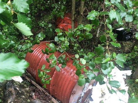 SLØVT: Bjørn Erik Sørli syns det er sløvt at folk bare lar søppel ligge i naturen.