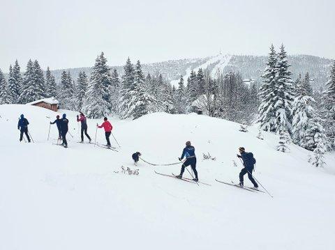 SNØ: De siste dagers store snømengder gjør at Haglebu skisenter må utsette sesongåpningen.