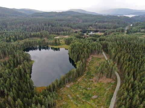 SLETTEMOEN: Modum og Krødsherad kommune har i flere år arbeidet med videre industriutbygging på Slettemoen.