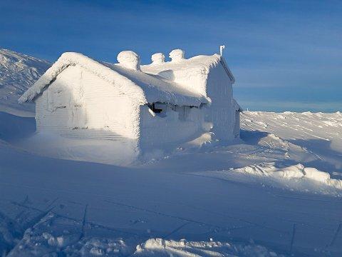 SPEKTAKULÆRT: Den snødekte turisthytta på Høgevarde er et blinkskudd. Turistvert Jarle Huseby bruker en dag på å måke fram dører, vinduer og piper, så kan kan fyre opp og åpne hytta for servering.
