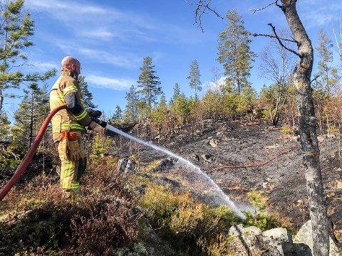 LYNGBRANN: Mannskapene fra Modum brannvesen fikk tirsdag ettermiddag raskt kontroll på lyngbrannen i Stensrudlia i Bingen.