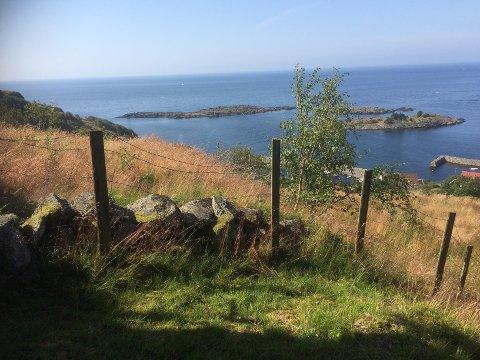 ÅROS: Her på en haug ovenfor Åros satt Amalie Johanne på en steinbenk og så utover havet mens hun sørget over mannen sin Jens Henrik Bie.