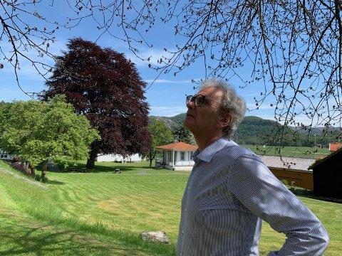 DØR: Visne greiner og blader er stort sett det som er igjen av det 160 år gamle morelltreet. Museumsdirektør Leif Dybing er fortvilet, lei og irritert.