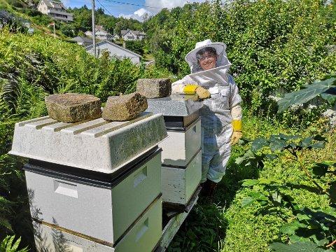 Operasongar Bodil Arnesen har drive med bierøkt i tre år heime i hagen på Haua. Dette arbeidet har det blitt ennå meir av i koronatida.