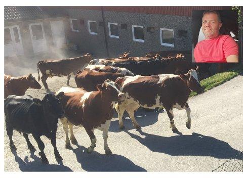 ROM FOR UTBETALING: Håvard Nevland, leiar av produsentlaget til Nortura i Bjerkreim, gler seg over at pandemien i det minste har ført med seg noko godt: betre tider for norsk matproduksjon. Overskot hjå Nortura gjer at konsernet kan betala ut 135 millionar kroner i medlemskapital.