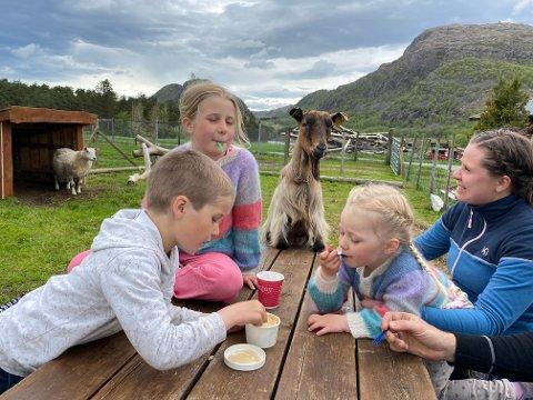 ISFEST MED NYSGJERRIG GJEST: Thomas, Astrid Lovise og Anna synest alle dei tre geiteisvariantane er like gode. Her nyt dei ein boks med karamellsmak. Både mor Janne Marie og geita Møyfrid har visst lyst å smaka.