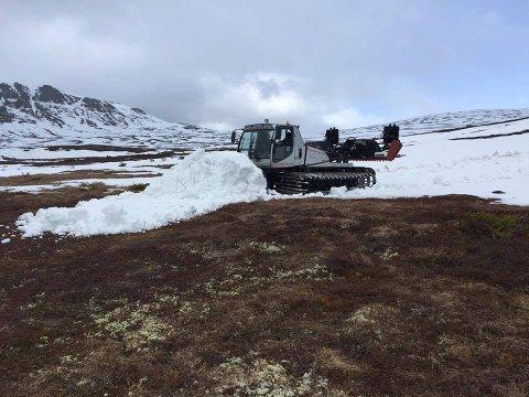HAR STÅTT PÅ: Eggedal turlag har jobbet hardt for å samle sammen snø slik at det skal bli mulig å gå på langrennstur i påsken.