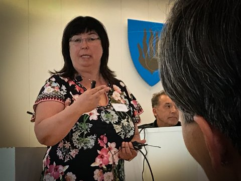 NÅDELØS: Ingunn Foss (t.v.) i Statens vegvesen henvendte seg direkte til Liers ordfører Gunn Cecilie Ringdal da hun ga klar beskjed om Riksvei 23.