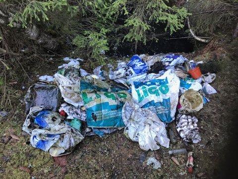 Plast på plast på plast. Mye av søppelet har ligget lenge, tror grunneier Linda Skjeldrum.