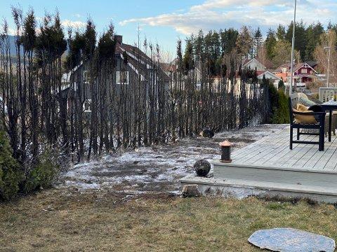 BRANN I HEKKEN: Brannen i hekken spredte seg fort, men mannen som bor i huset brukte hageslangen og fikk slukket så godt han kunne før brannvesenet kom.