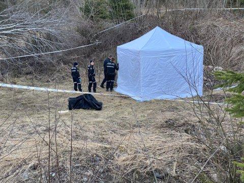 FUNN: Fredag fant en turgåer flere beinrester på Tranby. Politiet arbeider nå med å finne ut hvor beinrestene stammer fra.