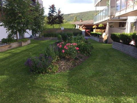 Borettslaget har jobbet med hagen i seks år, og den har blitt et felles samlepunkt.