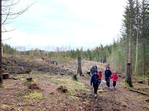 I år inviterer Skiforeningen Enebakk til Barnas Holmenkolldag, men uten ski på beina.