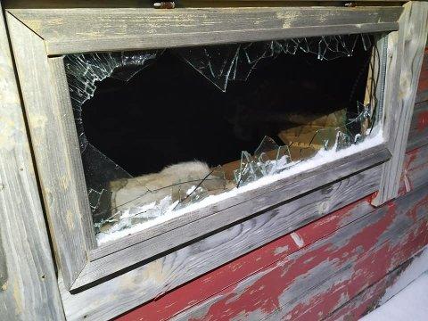 KNUST: Vinduet på grillhytta til Skårungen barnehage er ødelagt. Det er ikke første gang hytta har blitt utsatt for hærverk.